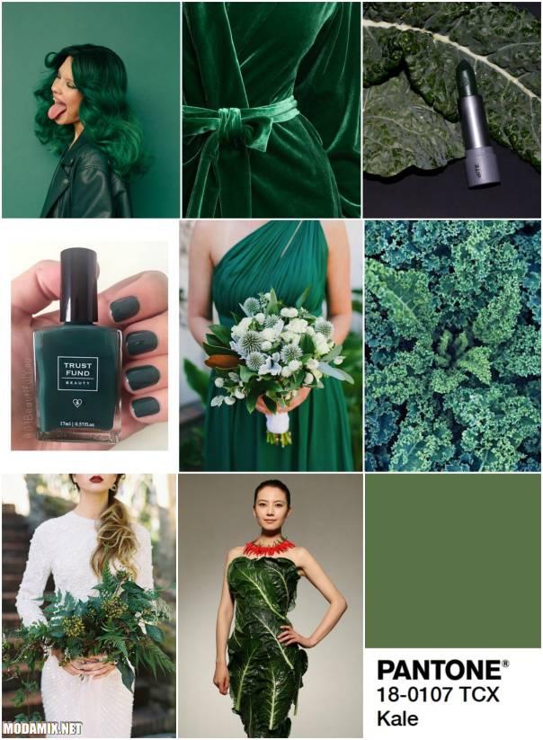 Модные цвета 2017 - Kale