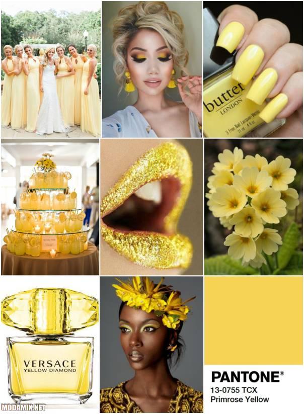 Модные цвета 2017 - желтый