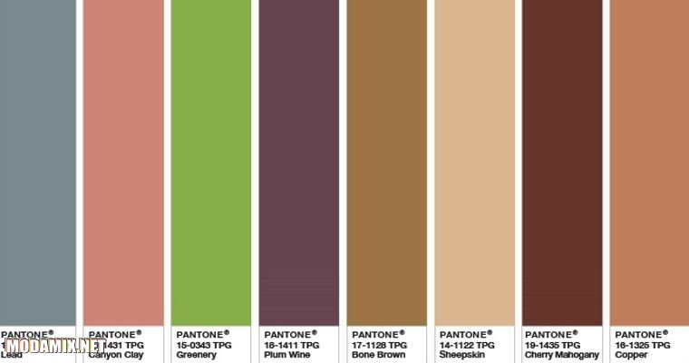 Подборка сочетаний зеленого цвета с коричневой гаммой