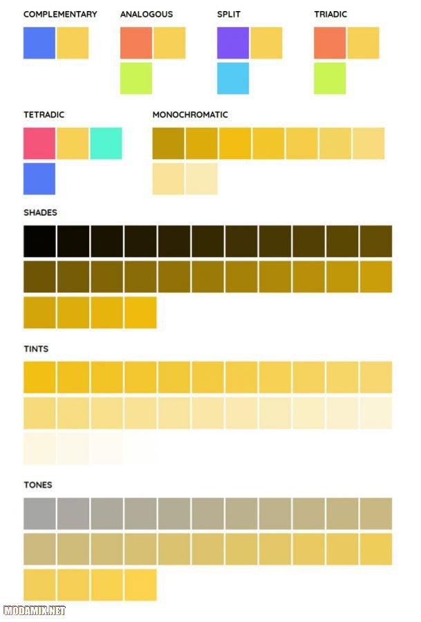 Фото сочетаний желтого цвета
