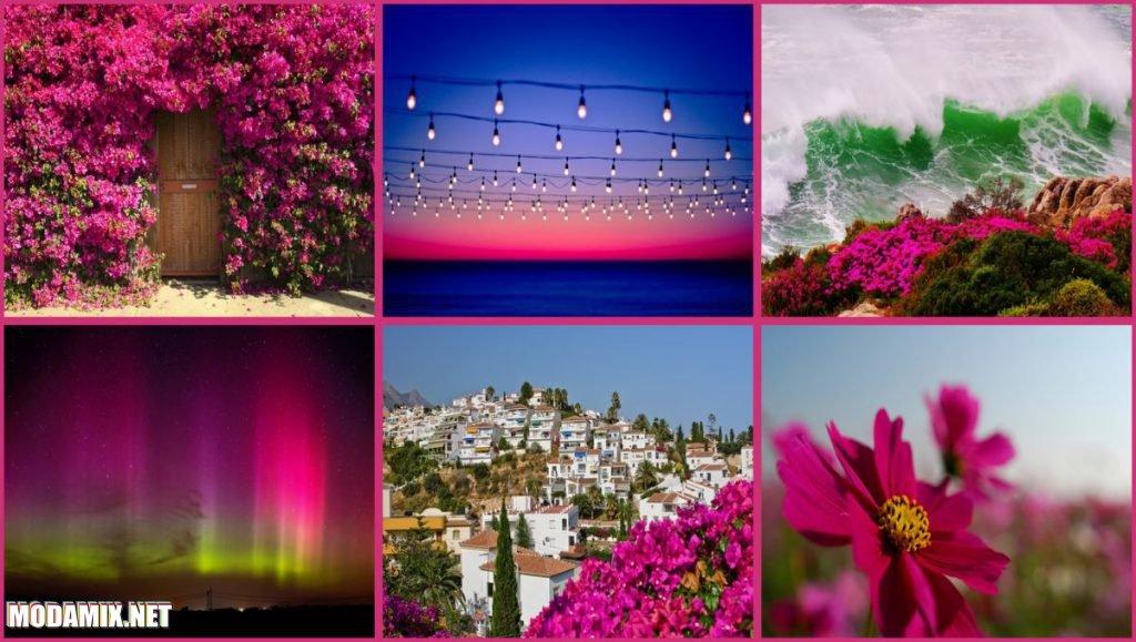 PANTONE 17-2034 Pink Yarrow в окружающей среде