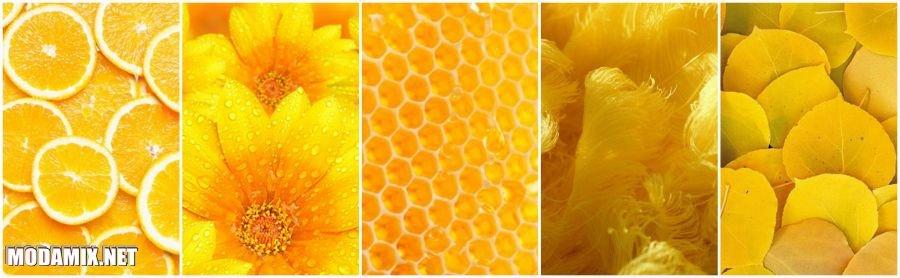 Текстуры в оттенке Желтая Примула