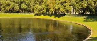 Карпиев пруд в Санкт Петербурге. Фото