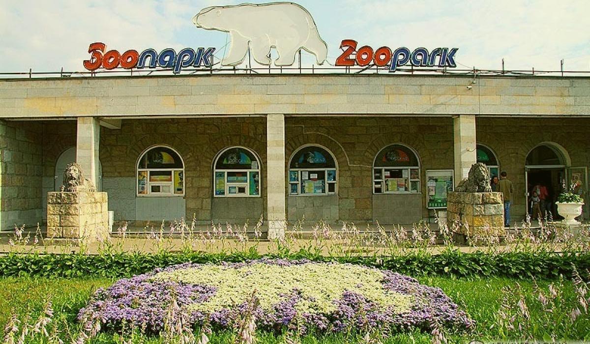 Зоопарк в Санкт Петербурге. Фото