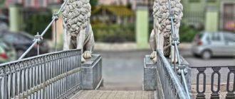 Львиный мост в Санкт Петербурге. Фото