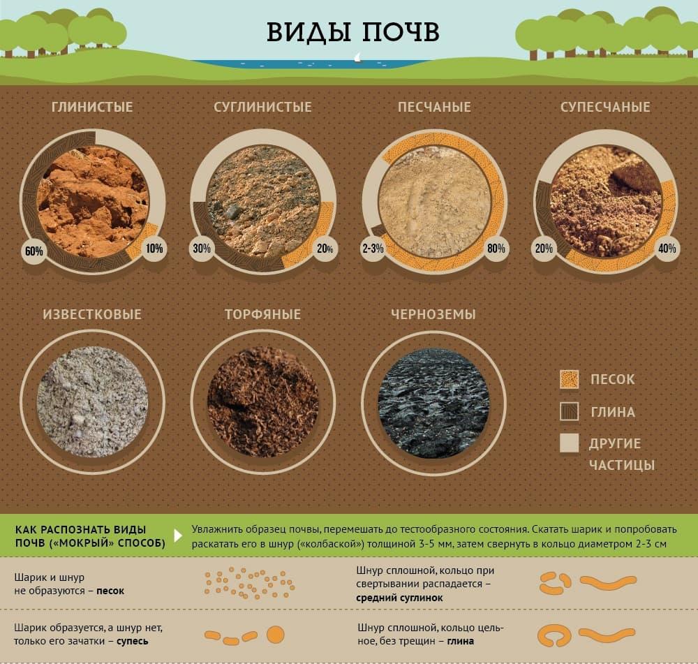 Как определить какая у Вас почва