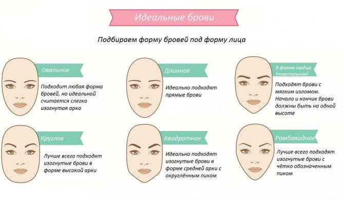Форма бровей под тип лица