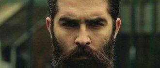 круглая борода